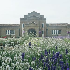Front of building with lavender