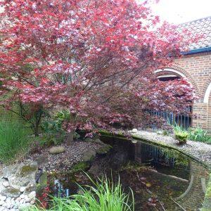 Floral Court Eastside